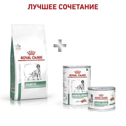 8_RC-VET-DRY-DogDiabetic