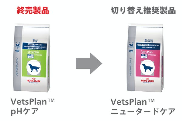 281-japan-local-vets-of-dog-ph-care-change
