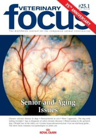 Senior and Aging Issues