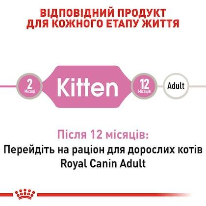 RC-FHN-Wet-KittenInstinctiveGravy_2-UA.jpg