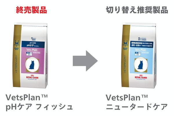 276-japan-local-vets-of-cat-ph-care-change