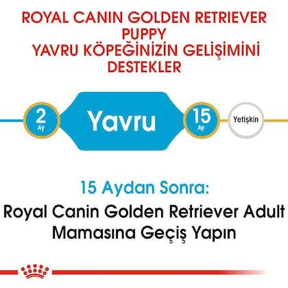 Royal Canin Golden Retriever Puppy Yavru Köpek Maması 4