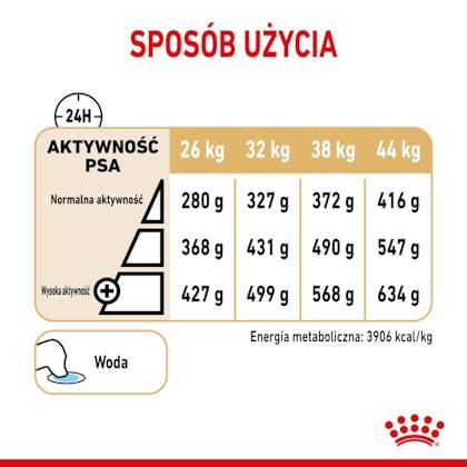 RC-SPT-DRY-GermShep5-CV-4-pl_PL