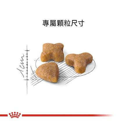 腸胃敏感成貓S33