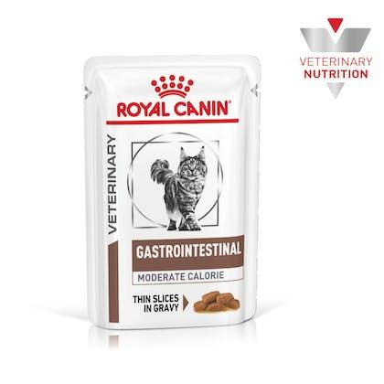 VHN-BrandFlagship-Hero-Images-Gastrointestinal Moderate Calorie MIG Cat Wet-B1