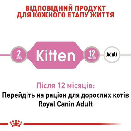 RC-FHN-Wet-KittenInstinctiveJelly_2-UA.jpg