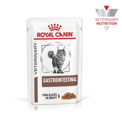 VHN-BrandFlagship-Hero-Images-Gastrointestinal MIG Cat Wet-B1