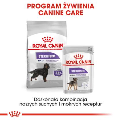 RC-CCN-SterilisedMaxi-CV-Eretailkit-6-pl_PL