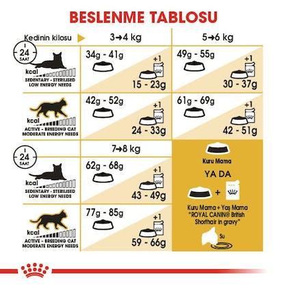 Royal Canin British Shorthair Adult Kedi Maması 8
