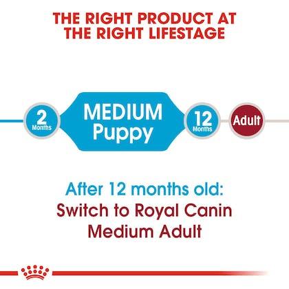 SHN-PuppyMedium-CV-EretailKit-1