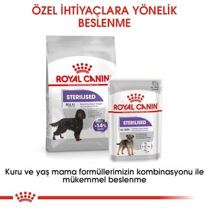 Royal Canin Köpek Maxi Sterilised3