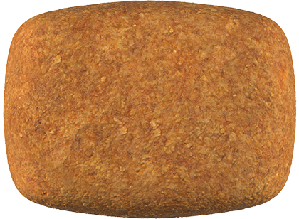 Hydrolyzed-Protein-Moderate-Calorie-Kibble
