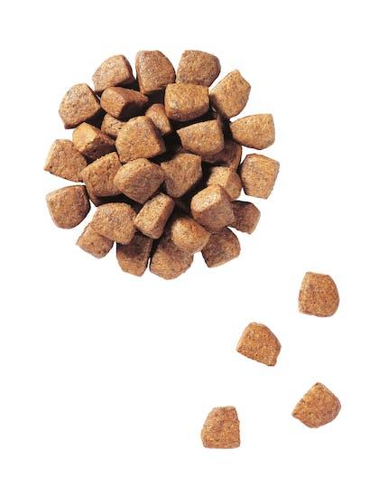 VCN 2011 - Kibbles and wet diet - PU-GD-PED-VCND-CROC