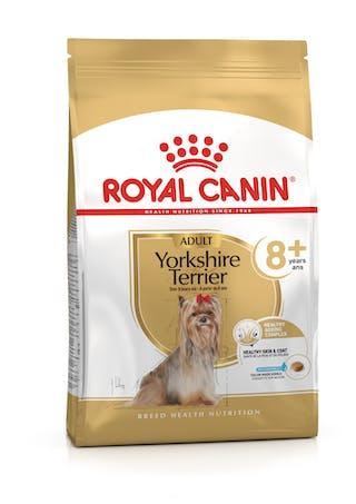 Yorkshire Terrier 8+