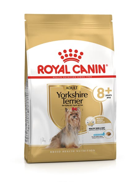YORKSHIRE TERRIER 8+ PACKSHOT-B1-BHN20