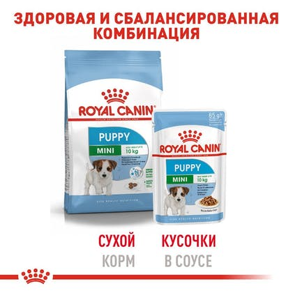 RC-SHN-Wet-MiniPuppy_5-RU.jpg