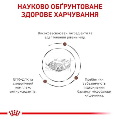 RC-VET-DRY-DogGastroHEP-Eretailkit-B1_4-UA