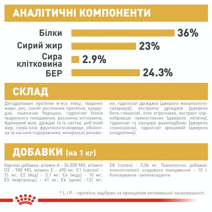 HI_FBN_MAINE COON KITTEN_ua_7
