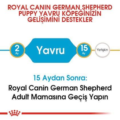 Royal Canin German Shepherd Puppy Yavru Köpek Maması 4