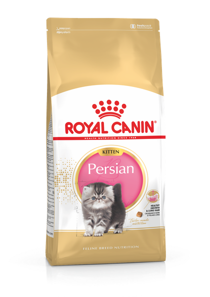 FBN2016_PACKSHOT_PERSIAN_KITTEN