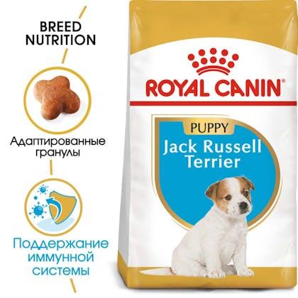 RC-BHN-PuppyJackRussell-MV-EretailKit_rus