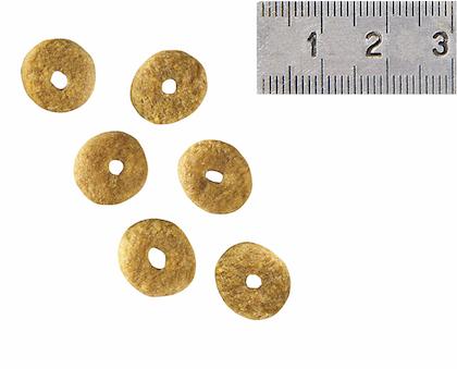 VCN 2011 - Kibbles and wet diet - AD-SD-NEU-VCND-CROC
