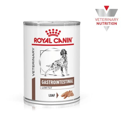 VHN-BrandFlagship-Hero-Images-Gastrointestinal Low Fat 410 Dog Wet-B1