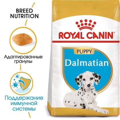 RC-BHN-PuppyDalmatian-MV-EretailKit_rus