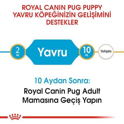 Royal Canin Yavru Köpek Pug Puppy2