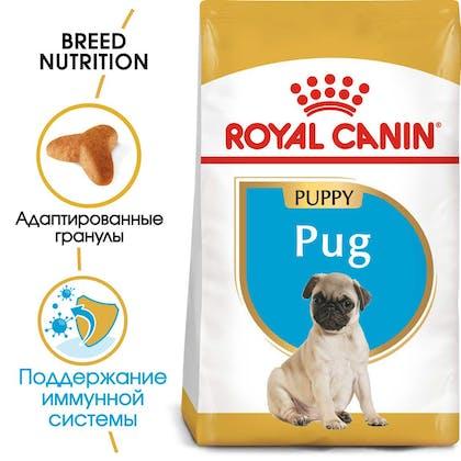 RC-BHN-PuppyPug-MV-EretailKit_rus