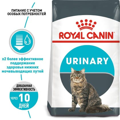 RC-FCN-Urinary_1-RU.jpg