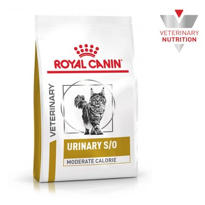 VHN-BrandFlagship-Hero-Images-Urinary SO Moderate Calorie Cat Dry-B1