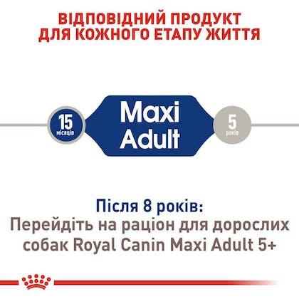RC-SHN-AdultMaxi_2-UA.jpg