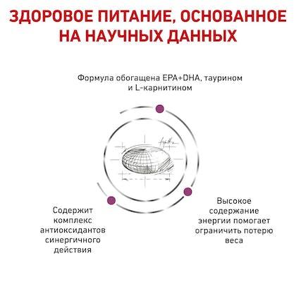 RC-VET-DRY-DogCardiac_rus4
