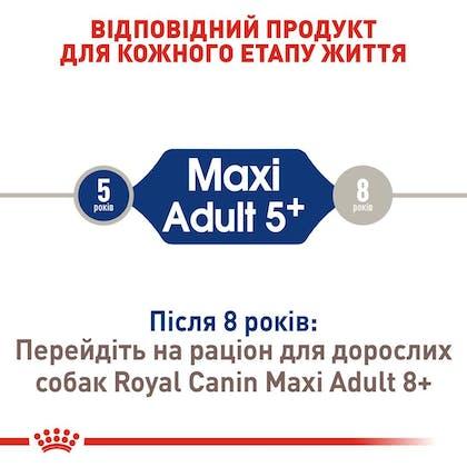 RC-SHN-AdultMaxi5_2-UA.jpg