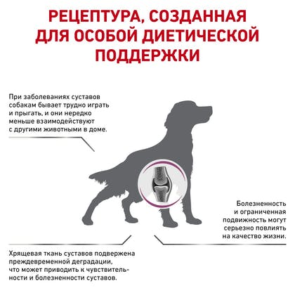 RC-VET-DRY-DogMobC2P_rus3