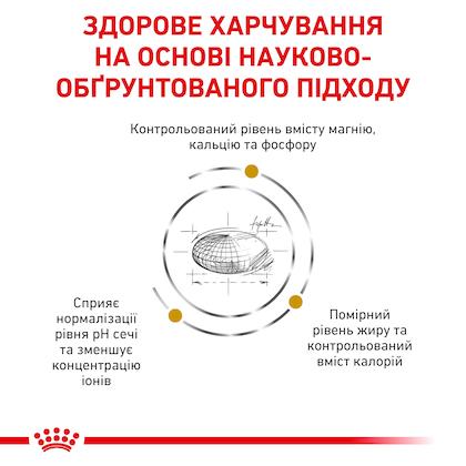 RC-VET-DRY-CatUrinarySOMC-Eretailkit-B1_03