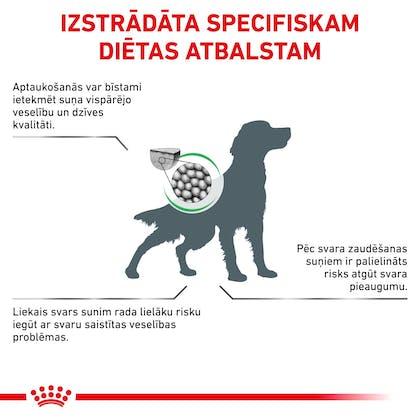 RC-VET-DRY-DogSatietyWM-CV-Eretailkit-2-lv_LV