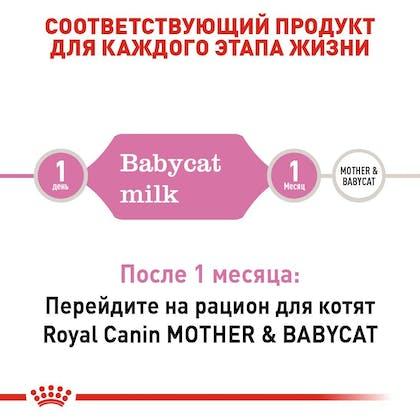 babycatmilk-EretailKit_2-RU.jpg