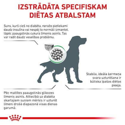 RC-VET-DRY-DogDiabetic-CV-Eretailkit-2-lv_LV
