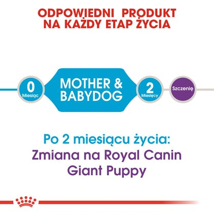 RC-SHN-Puppy-Giant Starter Mother & Babydog-CV1_018_POLAND-POLISH