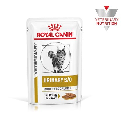 VHN-BrandFlagship-Hero-Images-Urinary SO Moderate Calorie Cat Wet-B1
