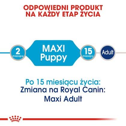 RC-SHN-Wet-MaxiPuppy-CV-Eretailkit-1-pl_PL