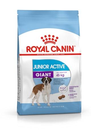 Giant Junior Active
