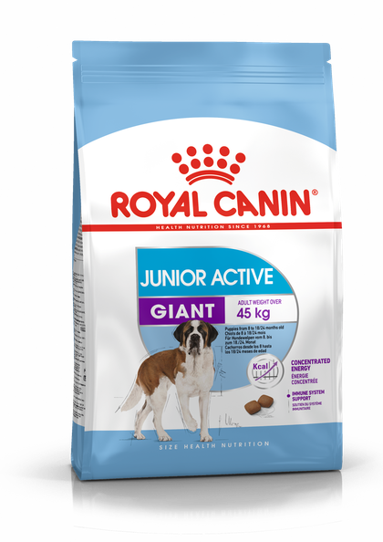 PACKSHOT-GIANT JUNIOR ACTIVE _SHN17