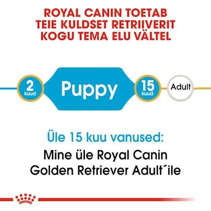 RC-BHN-PuppyGoldenRetriever-CM-EretailKit-1-et_EE