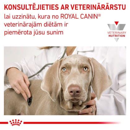 RC-VET-DRY-DogHypoSD-CV-Eretailkit-8-lv_LV