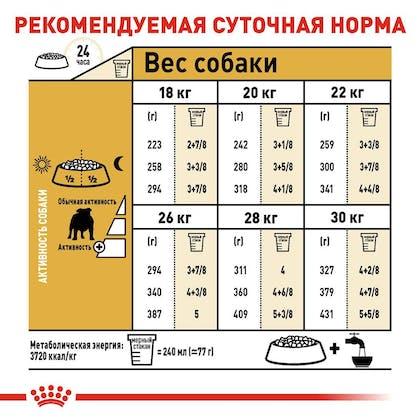 RC-BHN-Bulldog_6-RU.jpg