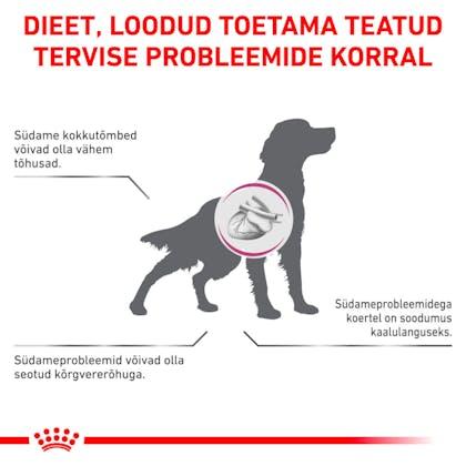 RC-VET-DRY-DogCardiac-CV-Eretailkit-2-et_EE