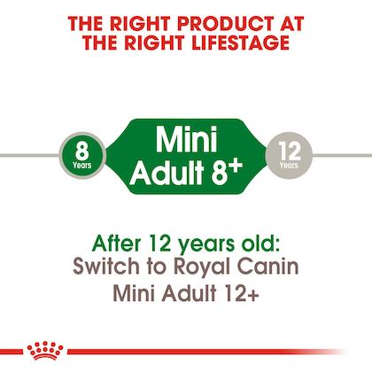 SHN-AdultMini8-CV-EretailKit-1